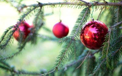 Schön oder schirch? Die Sache mit dem Christbaum